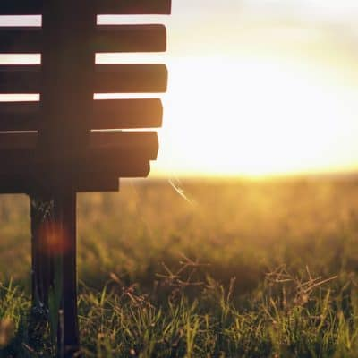 Bench in a grassy field at sunrise during Lent